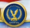 50 arrested in N. Sinai security campaign