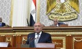 FM: Egyptian water security part of national security